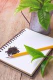 Torkad grön teblad och blyertspenna på anteckningsboken Royaltyfria Foton