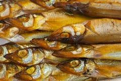 torkad guld- rök för fisk Arkivbilder