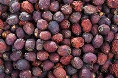 Torkad hagtorn - frukt, på ett trä fotografering för bildbyråer