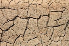 Torkad jord med många knäcker Royaltyfri Bild