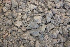 Torkad jordbakgrund Royaltyfri Fotografi