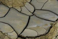 torkad jordning Royaltyfri Foto