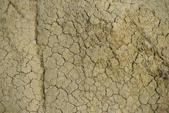torkad jordning Arkivfoton
