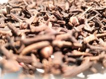 Torkad kryddnejlikan?rbild Nejlikasmaktillsats royaltyfria bilder