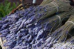 torkad lavendar marknad provence Arkivbild