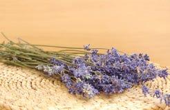 torkad lavendel Royaltyfri Bild