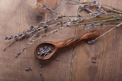 torkad lavendel Fotografering för Bildbyråer