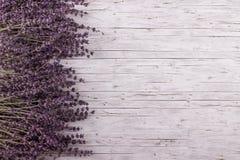 Torkad lavendel på träbakgrund Arkivbild