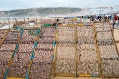 Torkad mackerel arkivfoto