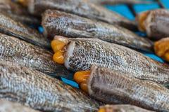 Torkad mat, torkad rimmad ung ogift kvinnafisk, thailändsk mat Royaltyfri Fotografi