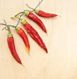 Torkad peppar som strängas på en rad Fotografering för Bildbyråer