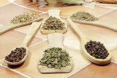 Torkad persilja bredvid svartpeppar och kryddnejlikor Andra kryddor bakom royaltyfria bilder