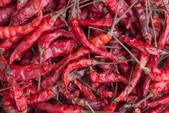 Torkad röd chiliesbakgrundstextur Royaltyfria Bilder
