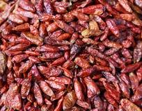 Torkad röd chilipappersbakgrund Arkivfoto