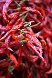 Torkad röd peppar Arkivbilder