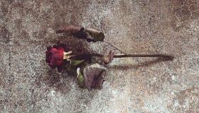 Torkad röd ros på en marmortabell fotografering för bildbyråer