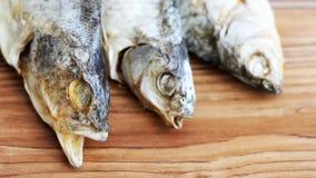 Torkad rimmad fisk, ett läckert mellanmål till öl Arkivbild