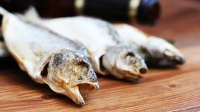 Torkad rimmad fisk, ett läckert mellanmål till öl Arkivfoton