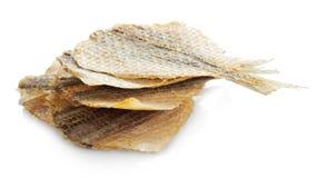 Torkad rimmad fisk för öl fotografering för bildbyråer