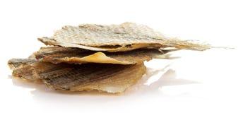 Torkad rimmad fisk för öl royaltyfri bild
