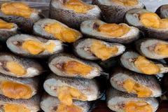 Torkad rimmad Snakeskin fisk med grodägg Royaltyfri Bild