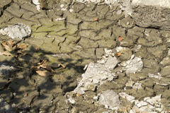 torkad riverbed Arkivfoton