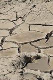 torkad riverbed upp Arkivbilder