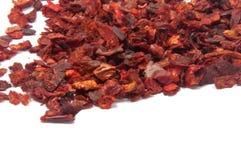 Torkad spansk peppar eller röd krydda för paprica Royaltyfria Bilder