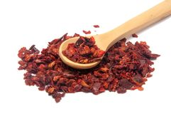 Torkad spansk peppar eller röd krydda för paprica Royaltyfria Foton