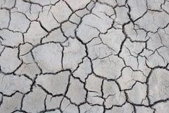 Torkad sprucken jord, öken, land, jordbruk Royaltyfri Fotografi