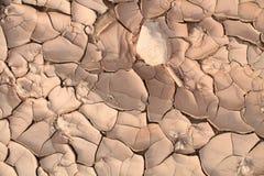 Torkad sprucken jord Arkivbild