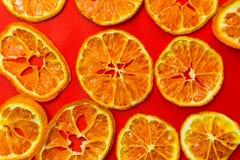 Torkad tangerin fotografering för bildbyråer