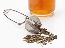 Torkad tea Royaltyfri Bild