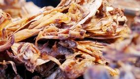 Torkad tioarmad bläckfisk royaltyfri bild