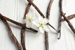 Torkad vanilj klibbar och blommar på ljus träbakgrund arkivbild