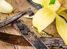 Torkad vaniljfrukter och vaniljorkidé på trätabellen royaltyfria foton