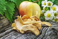Torkade äppleskivor Arkivfoton