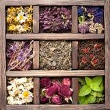 Torkade örter och blommor Arkivbilder