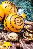 Torkade apelsiner med muttrar Royaltyfri Fotografi
