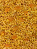 Torkade aprikosar och russin. Fotografering för Bildbyråer