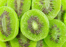 Torkade bevarade Kiwi Fruits Royaltyfri Bild