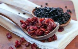 torkade blåbärcranberries Arkivbilder