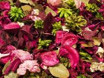 torkade blommapetals Royaltyfri Fotografi