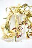 torkade blommor royaltyfria bilder