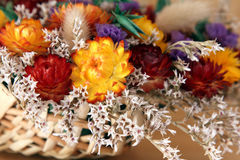 torkade blommor Royaltyfria Foton
