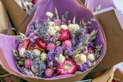 torkade blommor Royaltyfri Fotografi