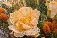 Torkade blommor i förgrunden, buketter av torkade blommor, blommaordning Royaltyfria Foton