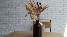 Torkade blommor i vas på den vita coffee shop med tabellen och stol lager videofilmer