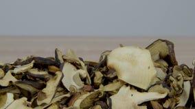 Torkade champinjoner på en trätabell glidareskott stock video