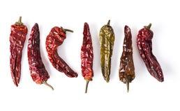 Torkade Chili Peppers Lineup fotografering för bildbyråer